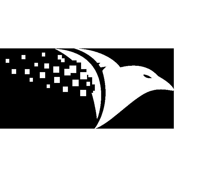 About RavenDB