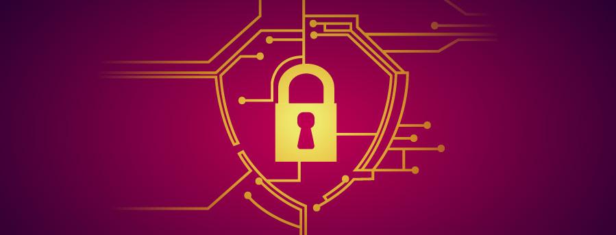 Security Vulnerability Advisory