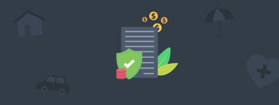 Insurance Company Ensures its Data with RavenDB NoSQL Database